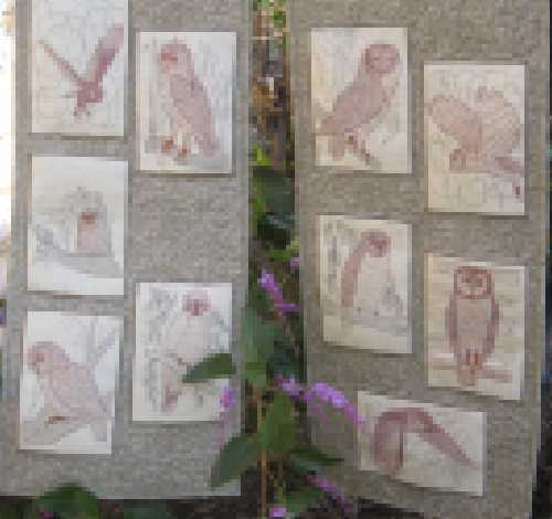 Wall hangings using Aus Owls