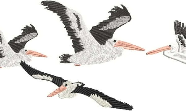 Stand Alone Lace Embroidery Designs : Ausbirds pelicans flying